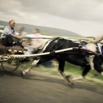 Appleby Horse Fair-8